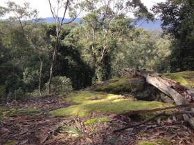 Kangaroo Valley Exclusive Winter Getaway