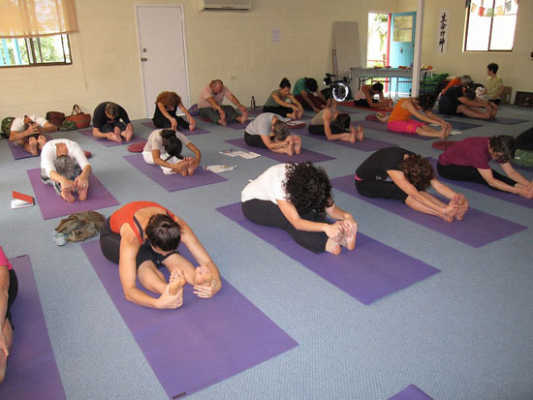 Lower Back Yoga Classes - Tuesday mornings for 4 weeks