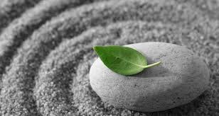 Meditation Workshop & Fundraiser