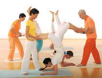 Sivananda Yoga City Tour 2014 - Sydney