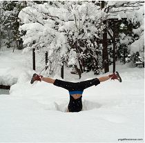 Yoga Asana & Pranayama for Winter – A Masterclass with Mark O'Brien