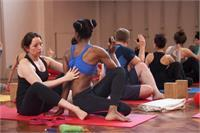 Yoga Assist Workshop