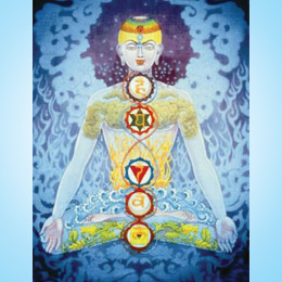 Your life is in your chakras with Amandeep Singh