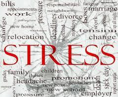 Yoga Workshop for Stress, Anxiety & Depression