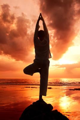 Introduction to Vinyasa Yoga 8 Week Summer Course