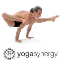Applied Anatomy & Physiology of Yoga with Simon Borg Olivier, Sydney May 2016