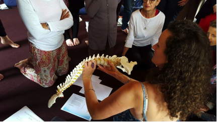 Anatomy workshop with Caroline Stuart – Sustain a health pelvis.