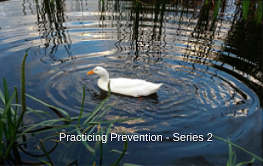 Practicing Prevention Series 2: Deep Relaxation; Meditative Stillness