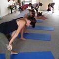Hatha Yoga Kriyas Cleanse