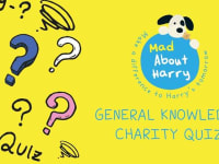Mad About Harry Quiz Header Image