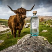 Mothers Ruin July Isle of Harris Gin Highland Cow