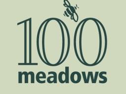 Wildflower Meadows Maintenance 100 Meadow Project