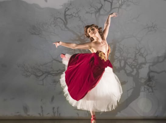THE RED SHOES. Ashley Shaw Victoria Page . Photo by Johan Persson 3 vsizbx