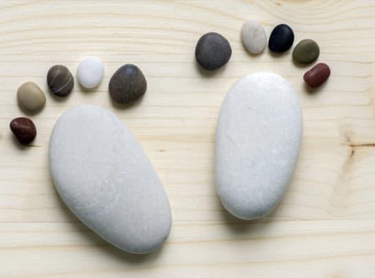 stony feet wsnrot