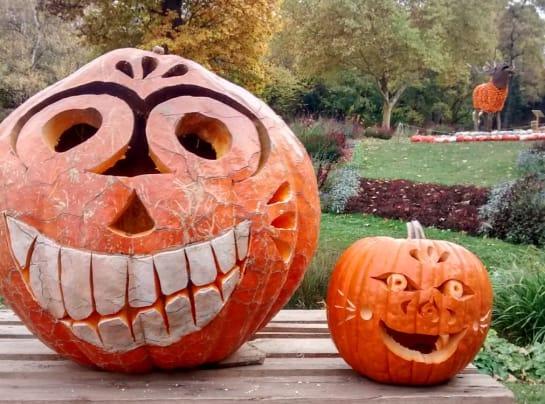 pumpkin carved nina Copy