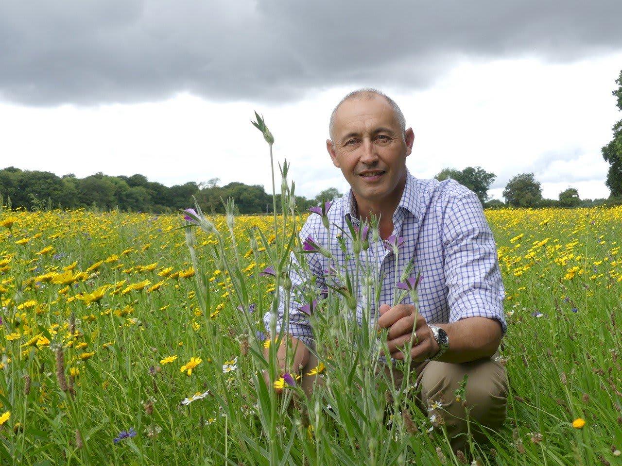 Wildflower Meadows Maintenance James Gillies