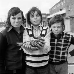 john payne 1974 small tckdwy