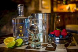 Mother's Ruin Chalgrove Artisan Distillery OX44 with glasses and lime