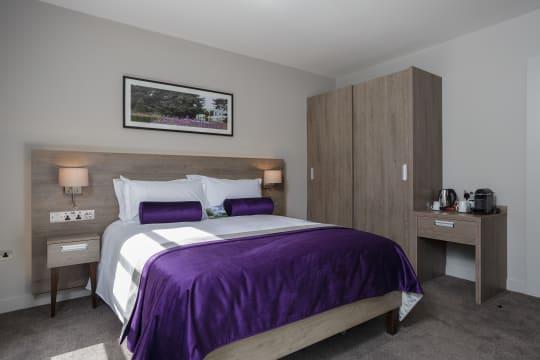 Bourne Room Purple is3jpr