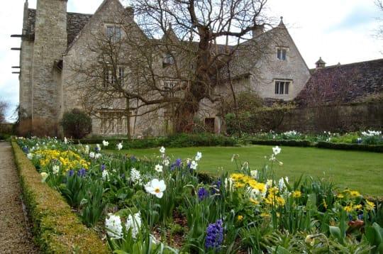 Kelmscott Manor Back Lawn Mulberry Tree