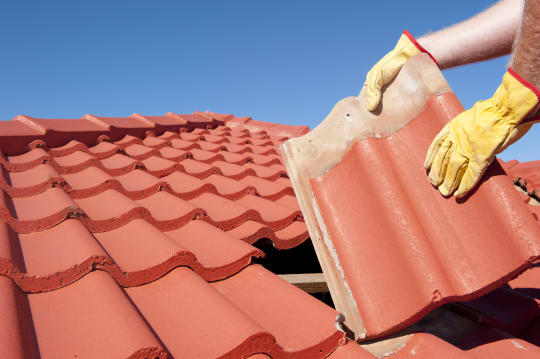 Milton Property Maintenance Tiled Roof