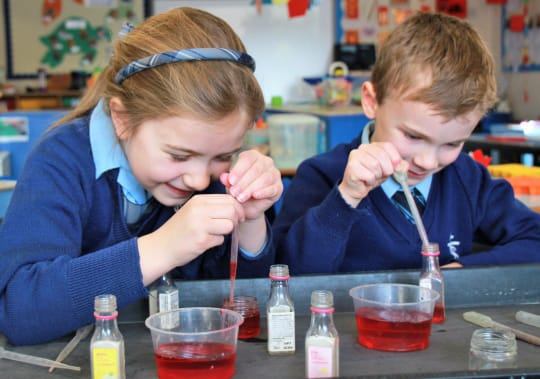 St Teresas School Academic Life Science