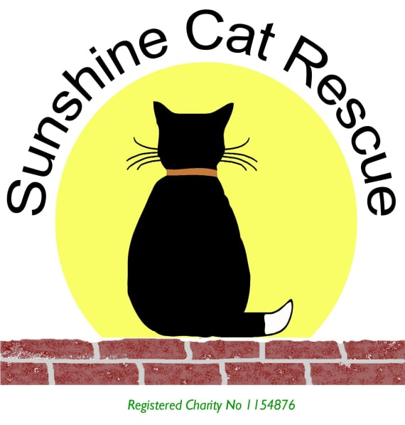 sunshine cat logo fiof0g