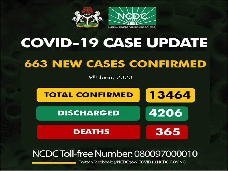 Nigeria's COVID-19 Cases Hit 13,464