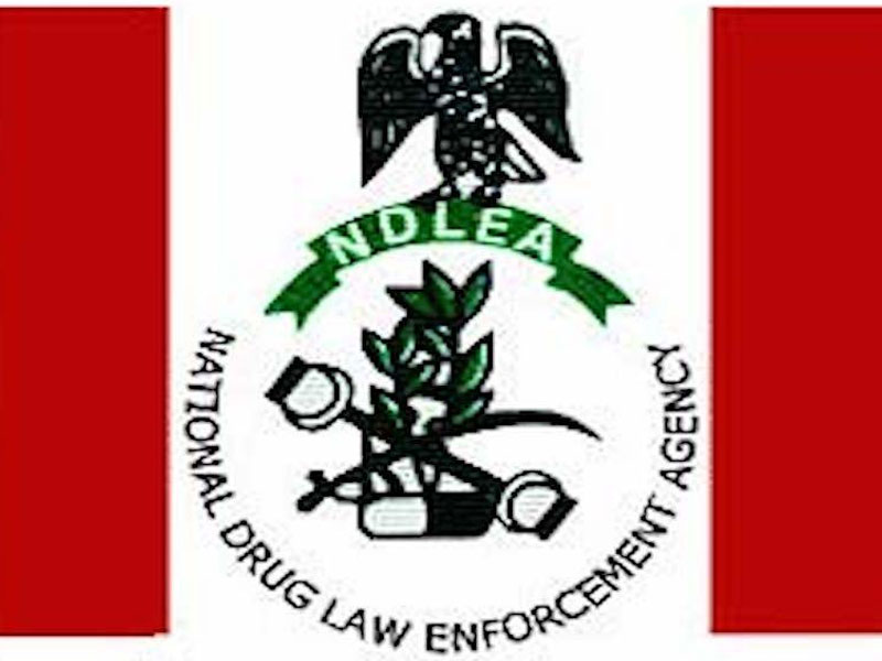 NDLEA releases list of 5,000 successful candidates