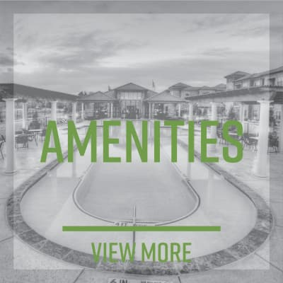 Link to amenities at Highlands at Alexander Pointe in Charlotte, North Carolina