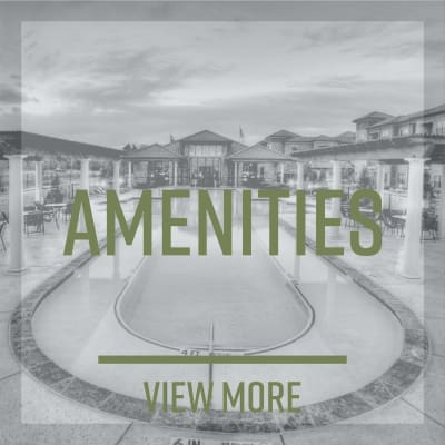 View the Amenities at The Park at Ashford in Arlington, Texas