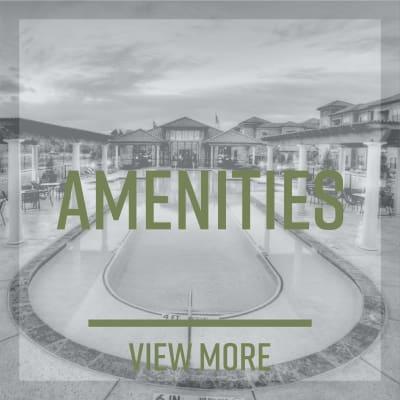 View the Amenities at The Park at Ashford in Arlington, Texas