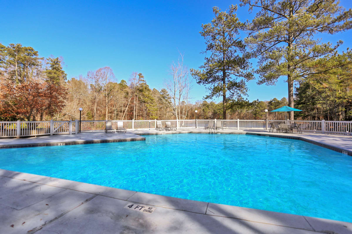 Resort-style swimming pool surrounded by mature trees at Reserve at Peachtree Corners in Norcross, Georgia