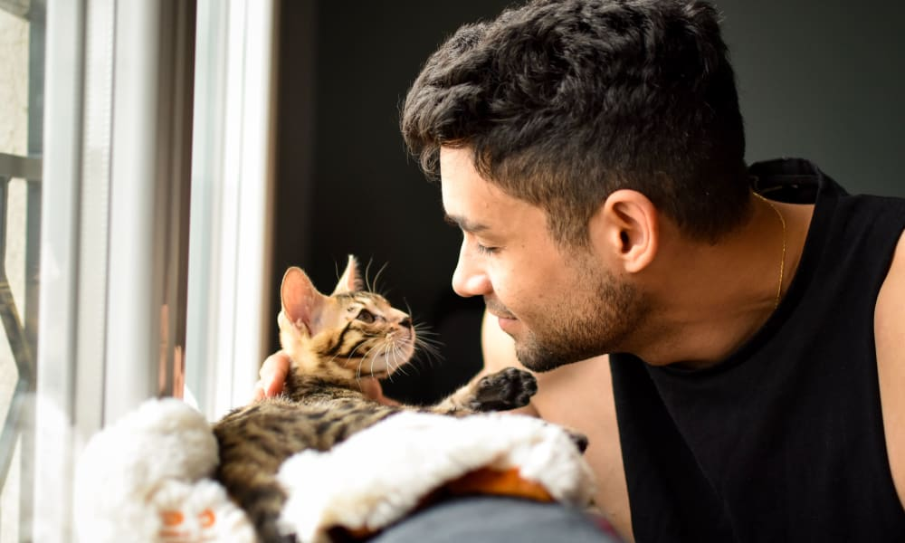 Resident petting his cat at Northfield Townhouses in West Orange, New Jersey