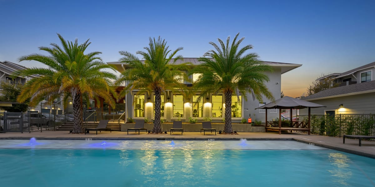 Sparkling pool with palm trees behind Marquis SoCo in Austin, lsn