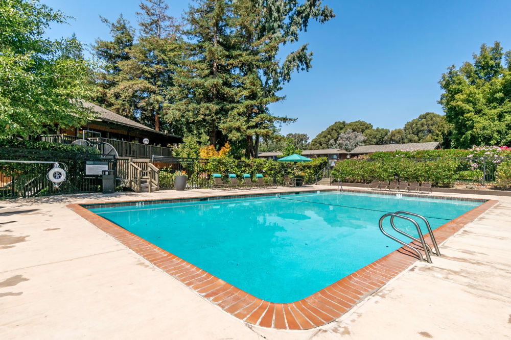 Luxury swimming pool at apartments in Fremont, California