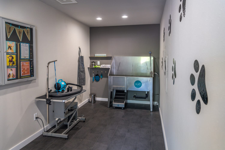 Pet spa at The VUE in Kirkland, Washington
