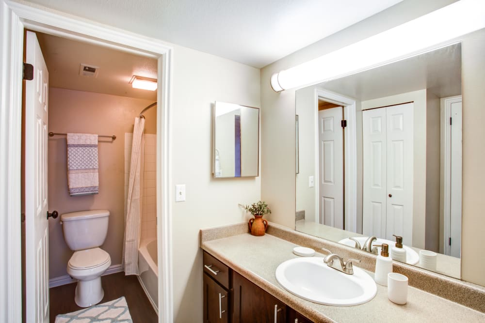 Large bathroom vanity with ample counter space at Royal Farms Apartments in Salt Lake City, Utah