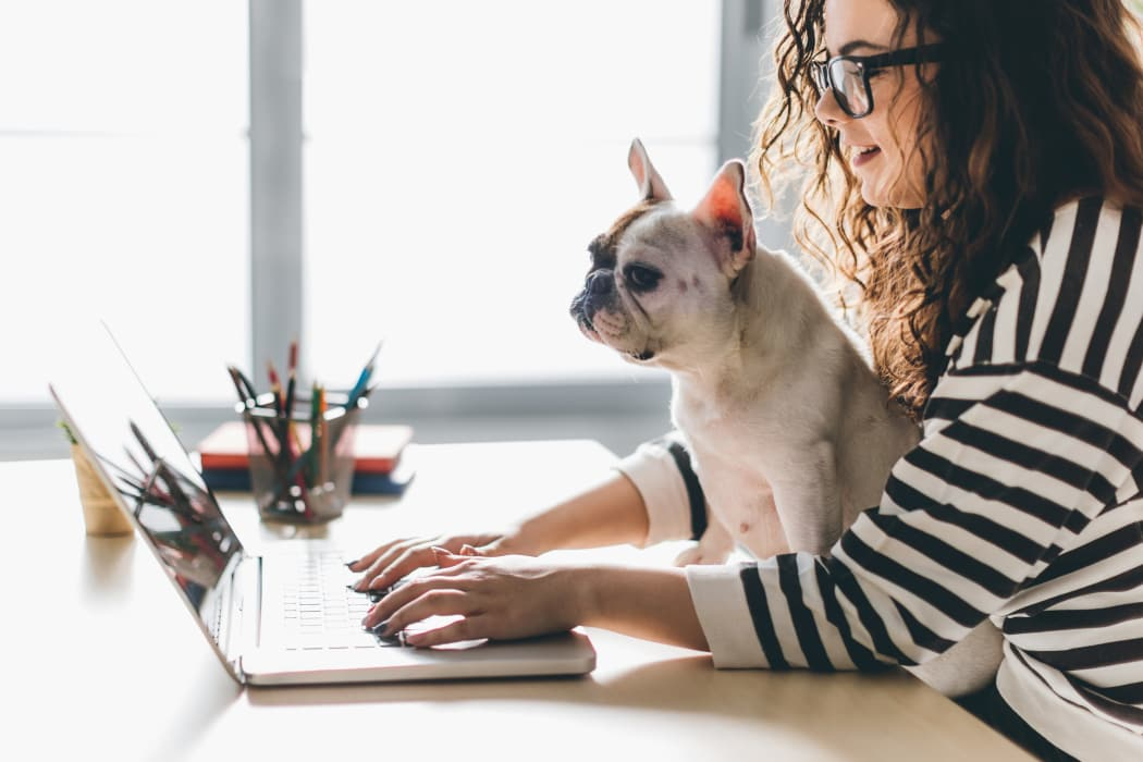 Resident and her dog surfing the web at Windsail Apartments in Tulsa, Oklahoma