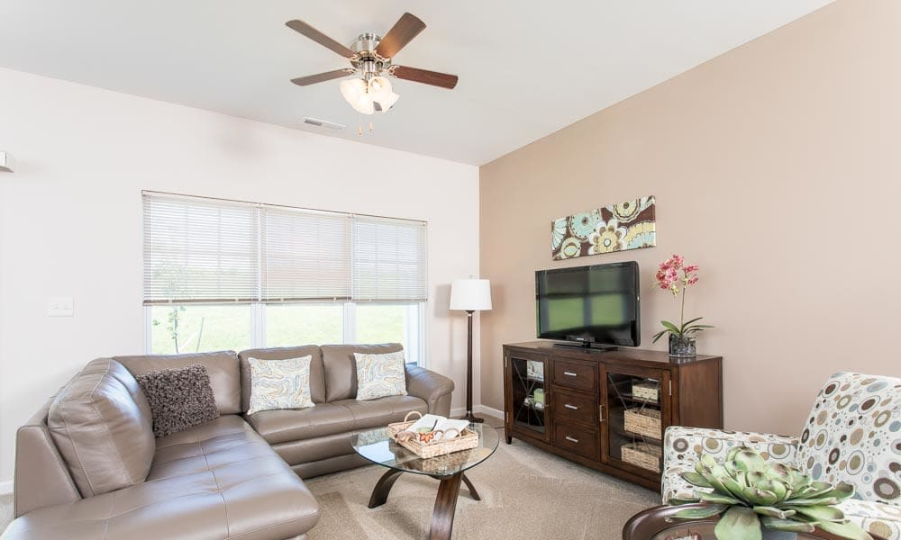 Enjoy apartments with a modern living room at Preserve at Autumn Ridge