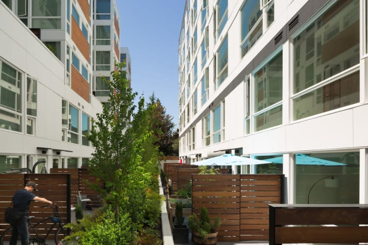 Beautiful apartments with a private patio at Rooster Apartments in Seattle, Washington