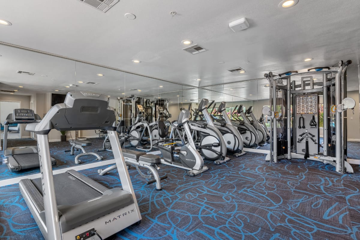 Fully equipped fitness center with treadmills, bike machines, and multi-workout machines at Alante at the Islands in Chandler, Arizona