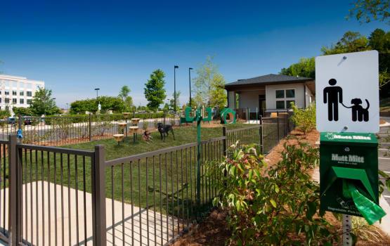 Beautiful gated dog park at Celsius in Charlotte, North Carolina