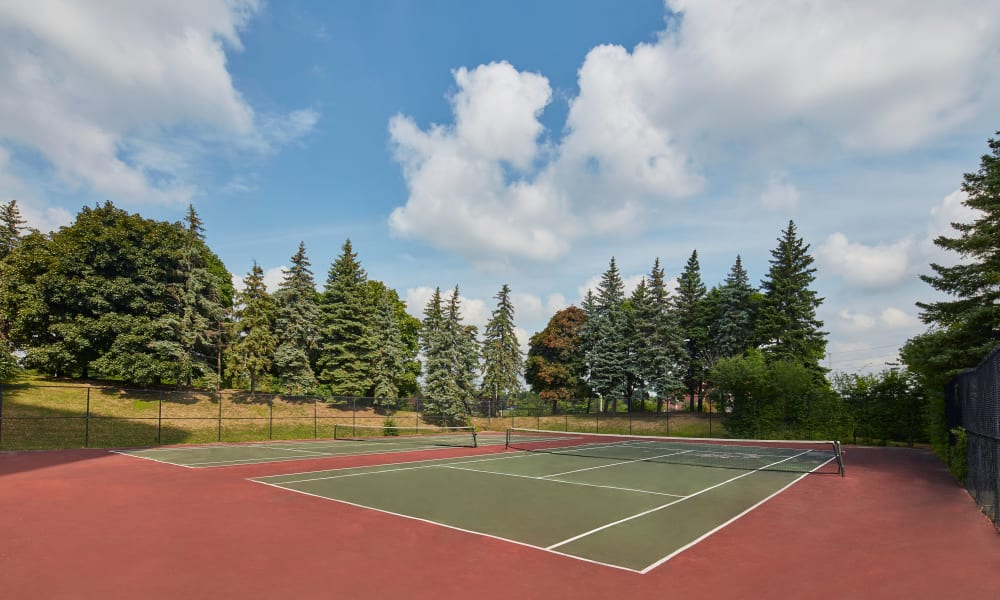 Lovely tennis courts at 8 Silver Maple Court in Brampton, Ontario