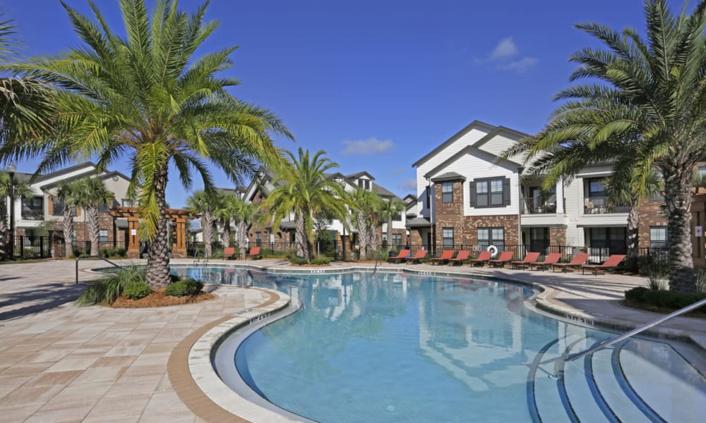 Palm trees around the pool at The Hawthorne in Jacksonville, Florida