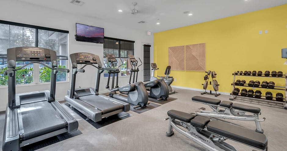 Enjoy apartments with a modern gym at Stonecastle Apartments