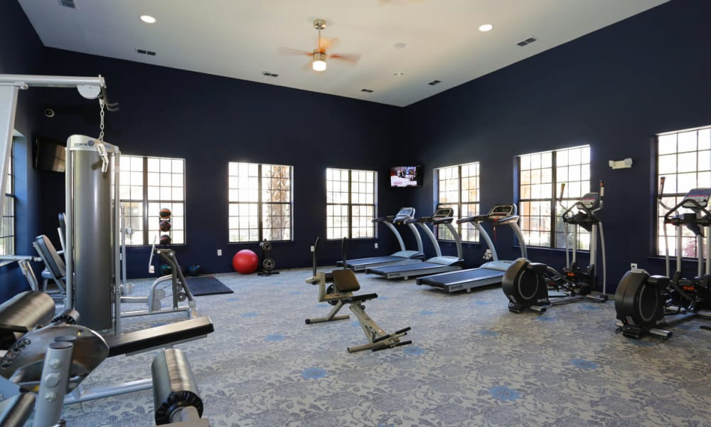 Well-equipped onsite fitness center at The Hawthorne in Jacksonville, Florida