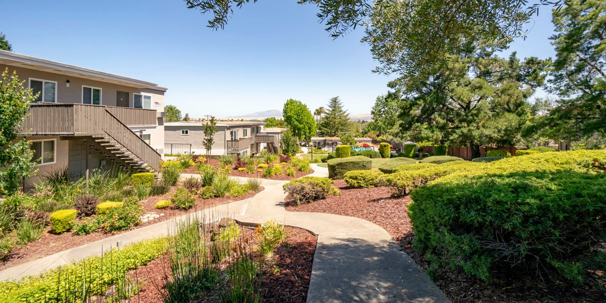 Meticulous landscaping along pathways throughout the community at Pleasanton Heights in Pleasanton, California