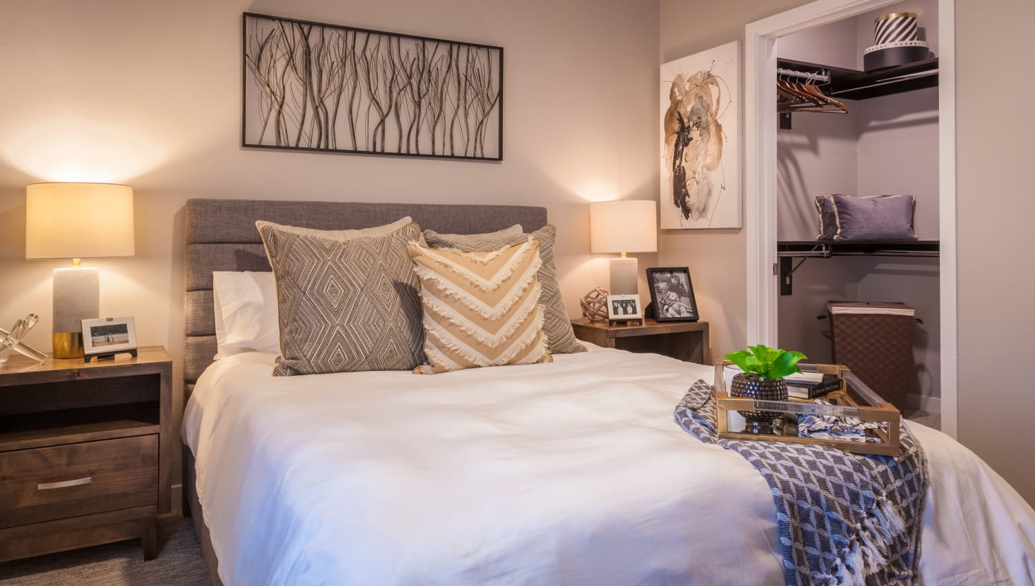 Comfortable bedroom with large closet at Olympus Alameda in Albuquerque, New Mexico