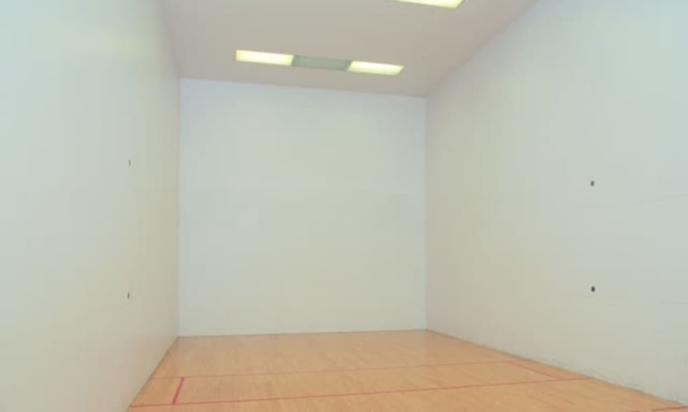 Racquetball court at Wellington Hill